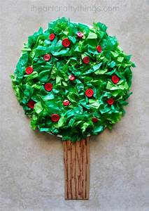 Gallery  Apple Tree Information For Kids