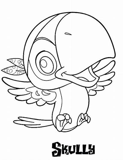 Macaw Coloring Hat Pirate Pages Printable Getcolorings