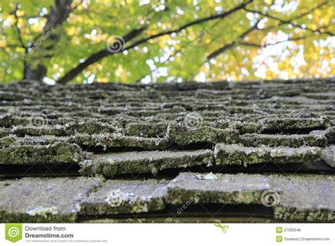 Old Shake Roofing Shingles Royalty Free Stock Photos Cantilever Roof Framing Red Inn Chattanooga Tn Colors For Brick House In Pigeon Forge Santa Clarita Roofing Painting Corrugated Metal Contractors Near Me Best Way To Repair A Flat