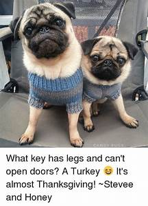CANDY PUGS What Key Has Legs and Canu0026#39;t Open Doors? A Turkey ud83dude06 Itu0026#39;s Almost Thanksgiving! ~Stevee ...