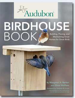 build nesting box bluebirds plans empress dirt