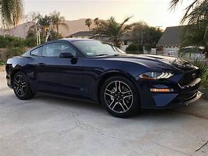 2019 Kona Blue Mustang just came in : Mustang