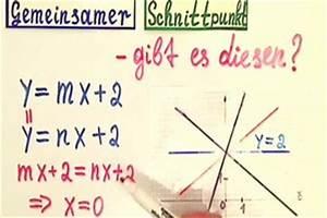 Nullstellen Berechnen Online : video geradenscharen und ihr gemeinsamer punkt so bestimmen sie ihn ~ Themetempest.com Abrechnung