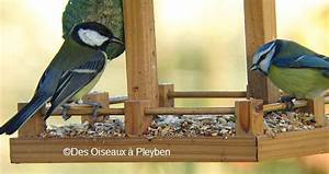 Les Mangeoires Pour Oiseaux Du Jardin