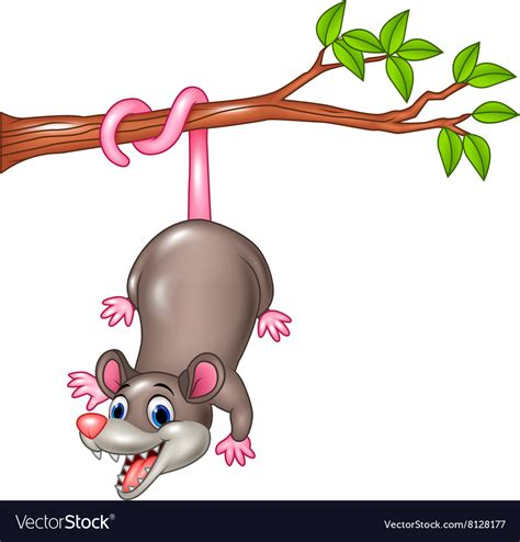 opossum clipart opossum on a tree branch royalty free vector