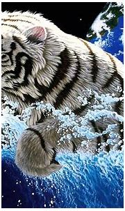 High Definition Water Wallpapers White Tiger Widescreen ...