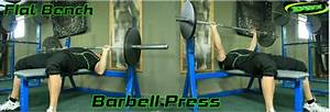 Barbell Bench Press Weight For Beginners