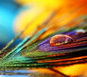 Colored Feathers HD Lock Screen Samsung Galaxy S3 ...