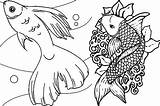Fish Coloring Pages Adult Adults Detailed Rainbow Realistic Printable Fishes Colouring Educative Getcolorings Koi Getdrawings Colorings Pioneering sketch template
