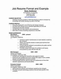 Sample resume for all types of jobs annecarolynbird for Sample resume for all types of jobs