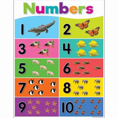 Numbers Chart Colorful Teacher Learning Created Resources