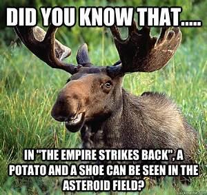 Movie Trivia Moose memes   quickmeme