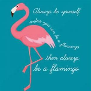 Pink Flamingo Flamingo Pinterest Flamingo, Pink