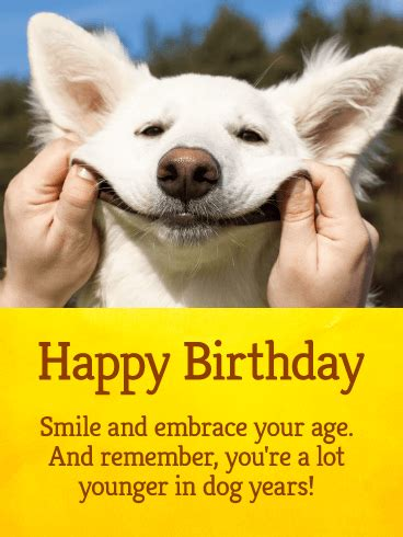 lets smile funny birthday card birthday greeting