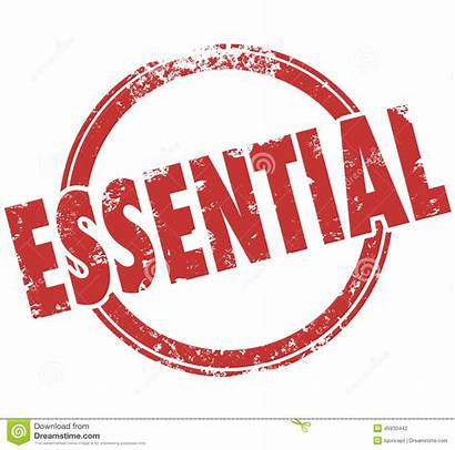 Essential Word Integral Service Stamp Critical Crucial
