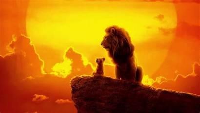 Lion King 4k Wallpapers Disney Simba Movies
