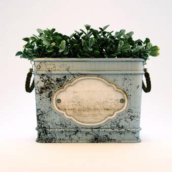 chambre d agriculture 77 un pot de fleurs de pensées télécharger des photos