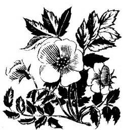 Free Wedding Clip Art Flowers