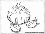 Coloring Pages Garlic Printable Print Onions ثوم sketch template