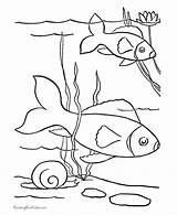 Coloring Fish Pages Printable Pet Printables Sheets Pond Cutouts Animal Ocean Pets Animals Duckling Ugly Popular Coloringhome Preschool Honkingdonkey Help sketch template