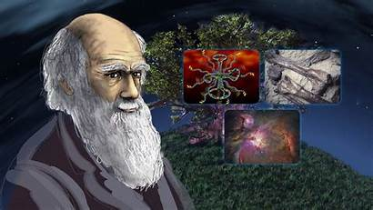 Darwin Charles Evolution Wallpapers Theory Science Background