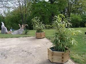Bambous En Pot : des bambous en pot ma vie est un long fleuve tranquille ~ Melissatoandfro.com Idées de Décoration