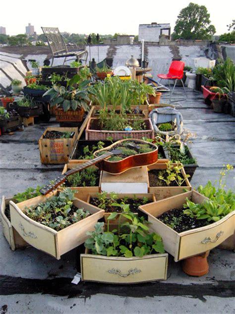 Urban Rooftop Gardening Icecairo