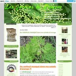 plantes sauvages comestibles pearltrees
