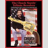 chuck-norris-flying-kick