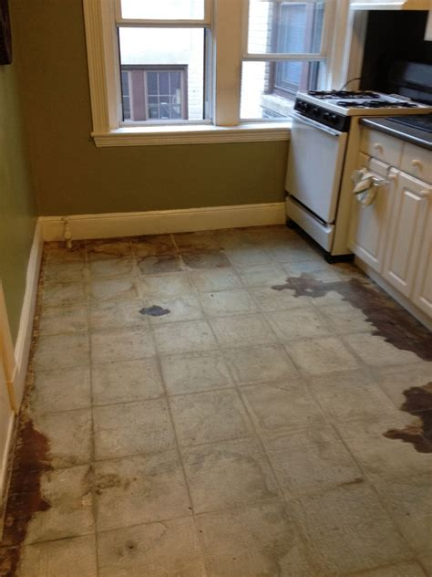 installing laminate floors in kitchen pergo floors fabulous how to clean laminate floors u less