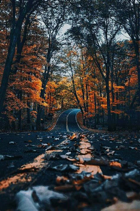 Fall Esthetic Backgrounds by F A B A R O O Location Location Location