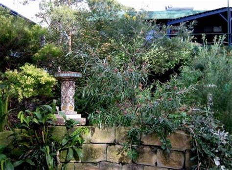 Ee  Gardening Ee   For Birds Birds In Backyards