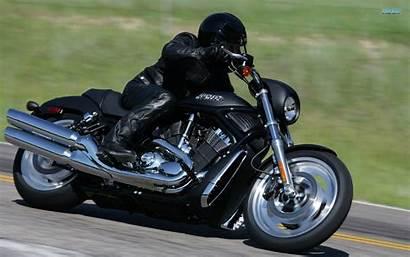 Harley Davidson Wallpapers Rod