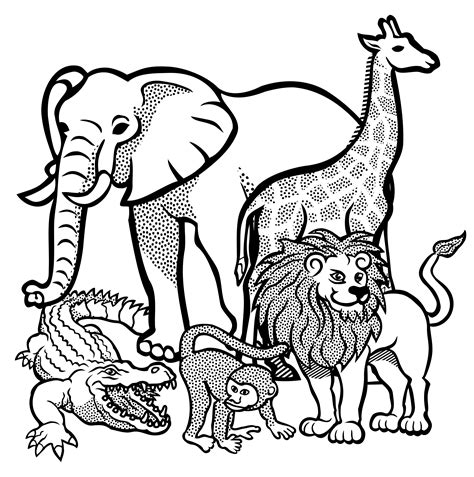 unique jungle animals clip art black  white drawing