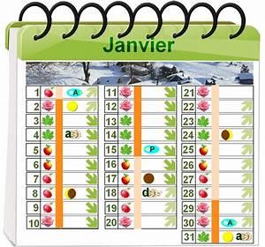 Calendrier Lunaire Potager : calendrier lunaire jardinerie riera ~ Melissatoandfro.com Idées de Décoration