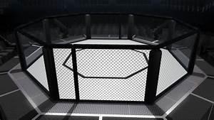 Ufc Octagon Cage | www.pixshark.com - Images Galleries ...