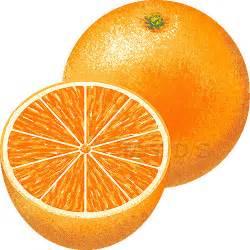Orange Clip Art Free