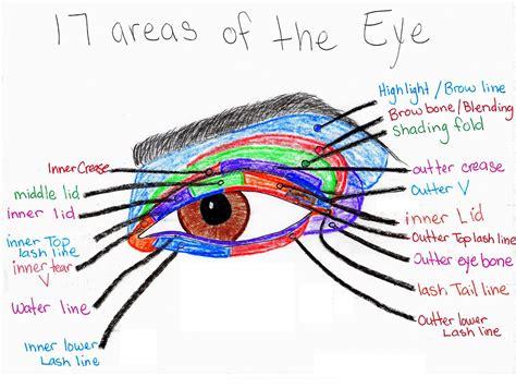 Diagram For Eye Makeup by Makeup With Eye Makeup Diagrams
