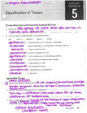 classification of tissues review sheet exercise 5 registration patient registration form date name i m ci f e jr ci sr last middle
