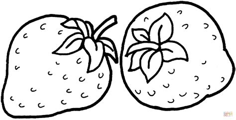 strawberries coloring page  printable coloring pages
