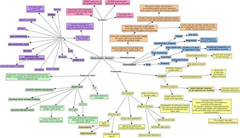 pancreatic cancer concept map pancreatic cancer