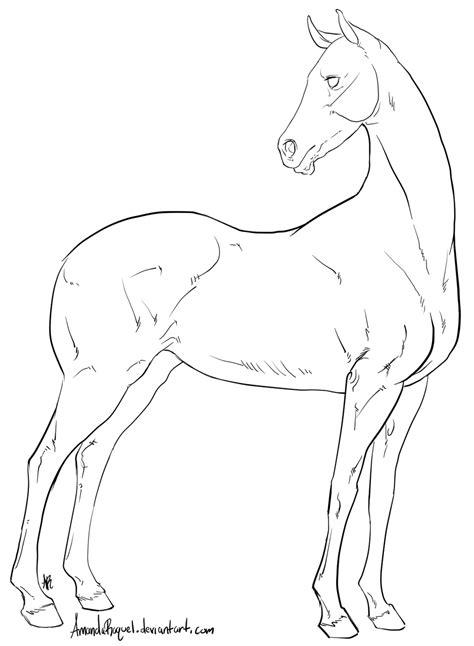 sport horse base  amandaraquel  deviantart