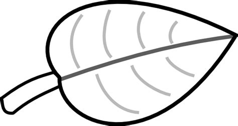 large leaf template leaf gorda clip at clker vector clip royalty free domain