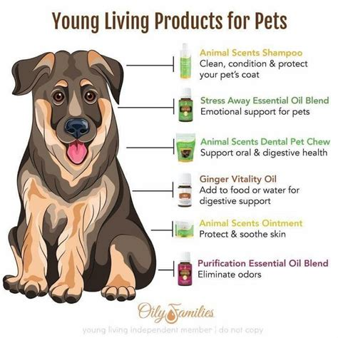 young living products  pets pets aetherische oele hunde