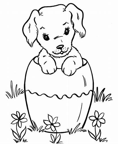 Coloring Puppies Dogs Pages Puppy Flowers Dog