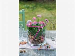 Frühlingsdeko Im Glas : fr hlingsdeko mit bellis mein sch ner garten ~ Orissabook.com Haus und Dekorationen
