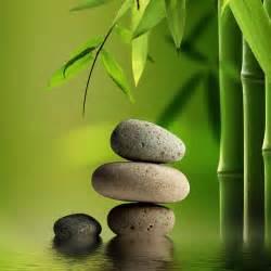 glasbilder badezimmer glasbild digitaldruck 1048 1 gb quot steine im wasser neben bambus quot in 2 größen ebay