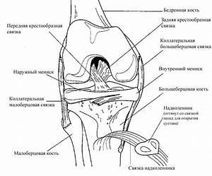 Болит локтевой сустав лечение в домашних условиях