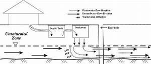 Wastewater Flow In A Typical Septic System Eventually Septic System