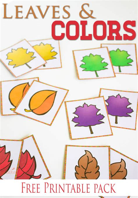free fall colors printable activities for preschoolers 337   fall leaves color pin